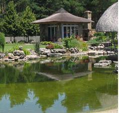 Ваш пруд в японском стиле подарит вам покой и настроение