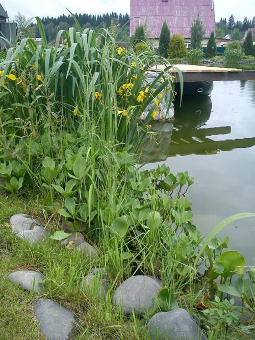 Оформление береговой линии большого водоема для домашней рыбалки.